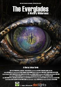 Everglades poster